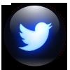 DE Twitter x100 C B.png
