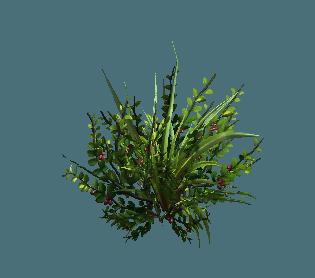 shrub03.png