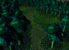 5-dark-forest.png