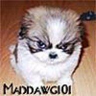 Maddawg101