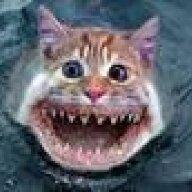 Mr.Catfish